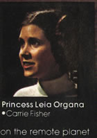 princess leia in the star wars novelisation